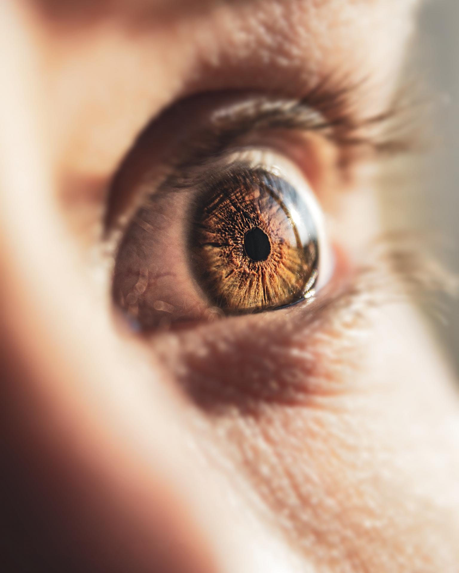 Cirugía de retina y vítreo