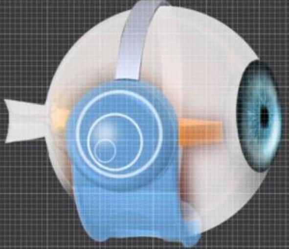 Ojos biónicos: volver a ver