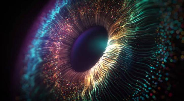 La percepción comienza en la retina