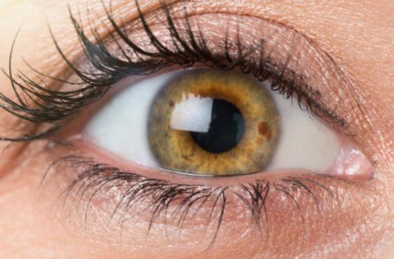Los colores de ojos más raros